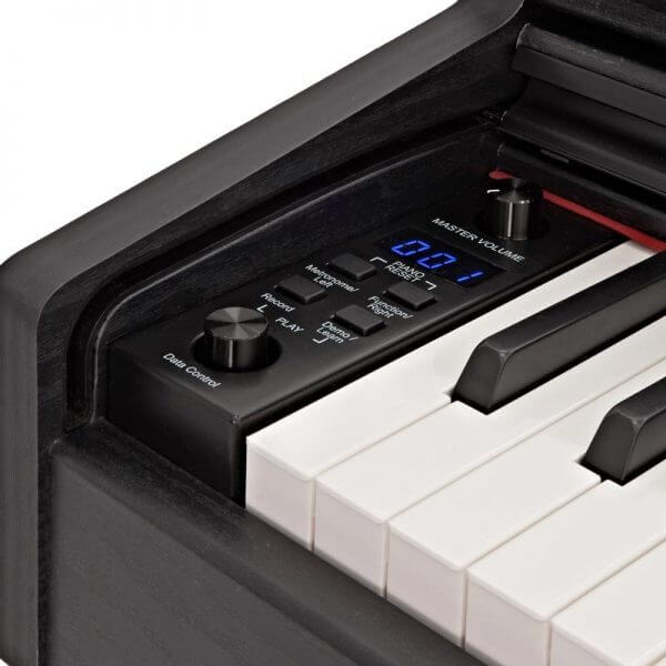 DP-10X Digital Piano - controls